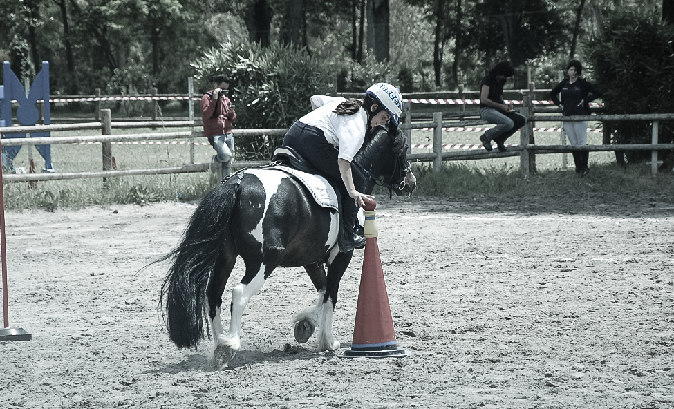 Scuola_pony